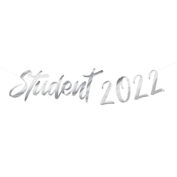Crownstudent Backdrop silver 2022